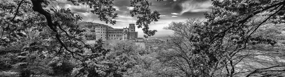 PanoramaHeidelbergSchloss_Facebook by Photographer: Roger Schaefer.