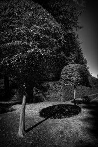2016-10-05-schwetzingenschloss-l1006432 by Roger Schäfer.